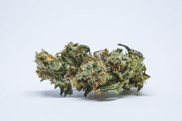 White-Fire-OG-Marijuana-Strain