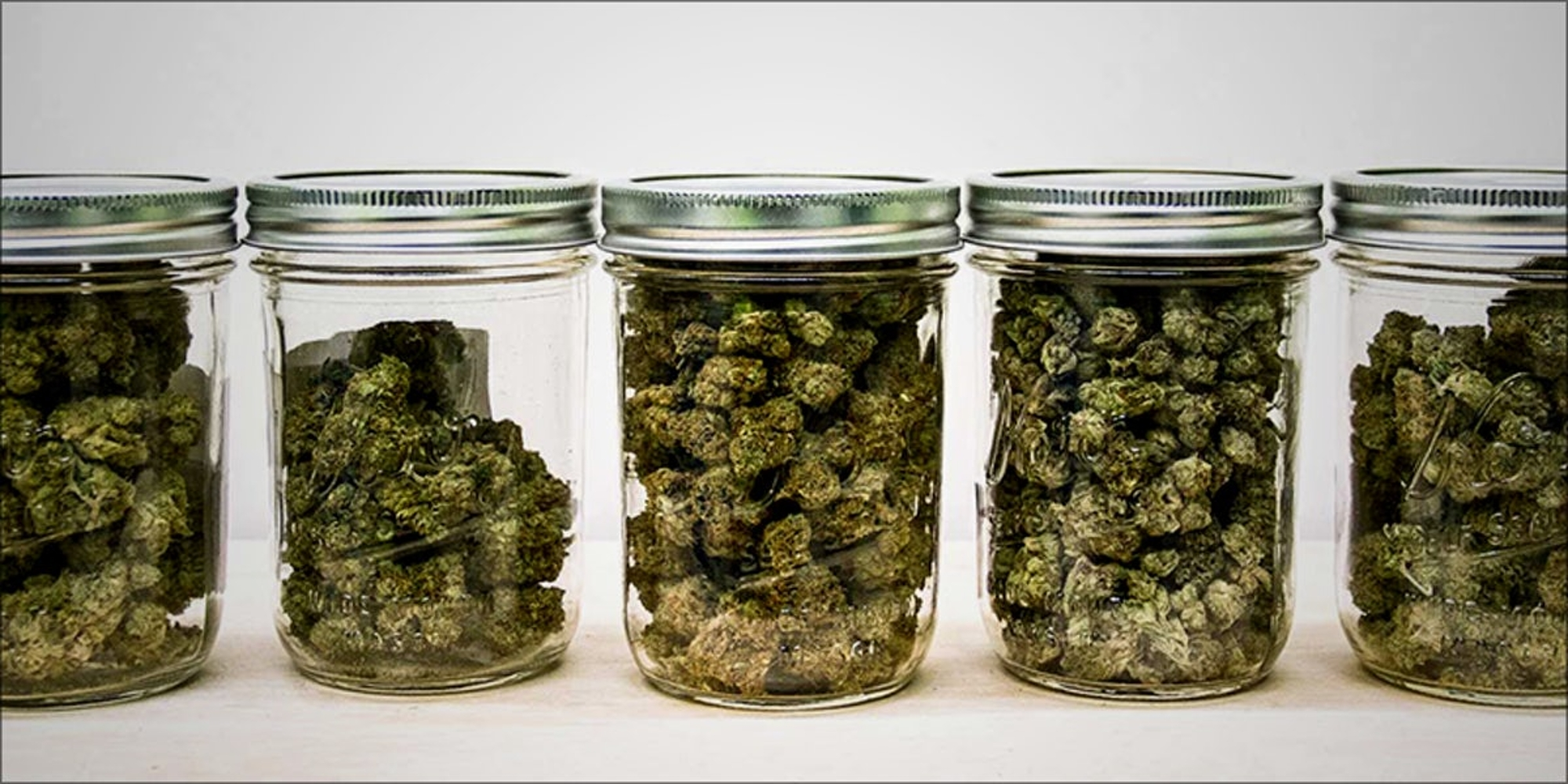 How Long Does Weed Stay Good? | Herb