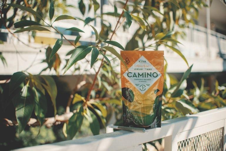 Camino Gummies best thc gummies