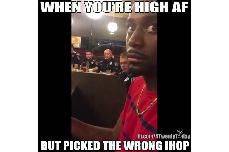 96 Funny Weed Memes For True Stoners Herb