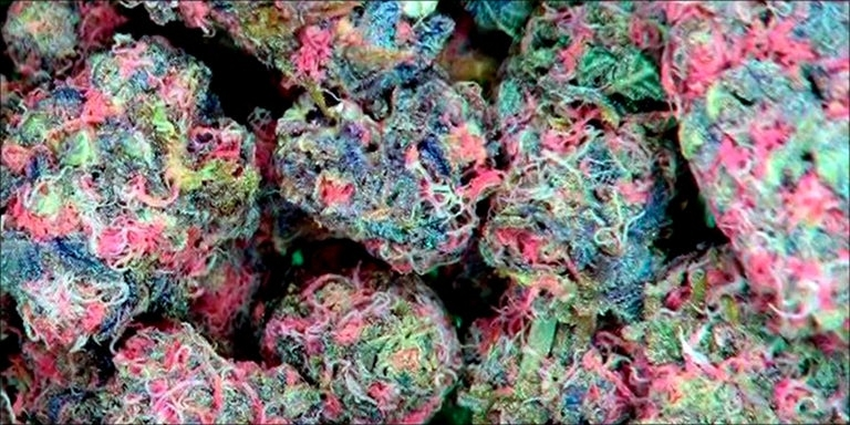 Is pink cannabis a thing?